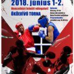 Parázs csaták és további magyar sikerek